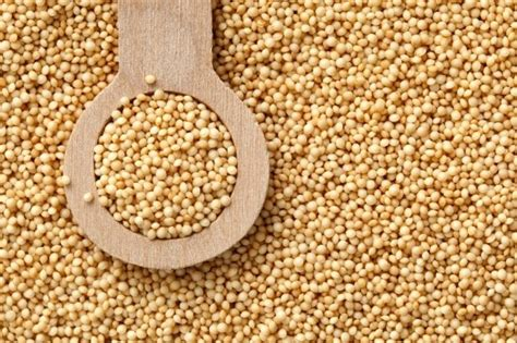 10 Health Benefits of Amaranth Grain and Leaves