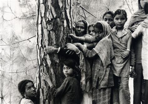 How the Tree-Hugging Movement Got Started in a Small