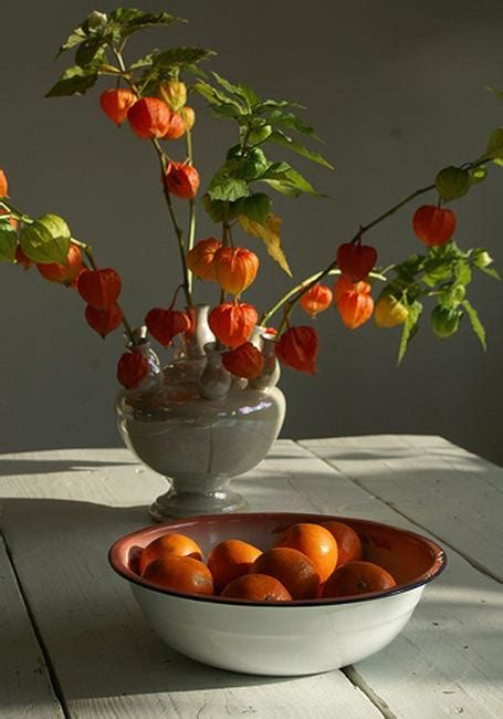 Physalis Accents, Colorful Fall Decorating Ideas