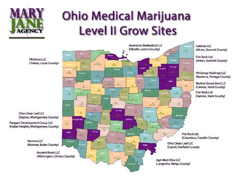 Medical marijuana in Ohio: 8 key questions answered as the