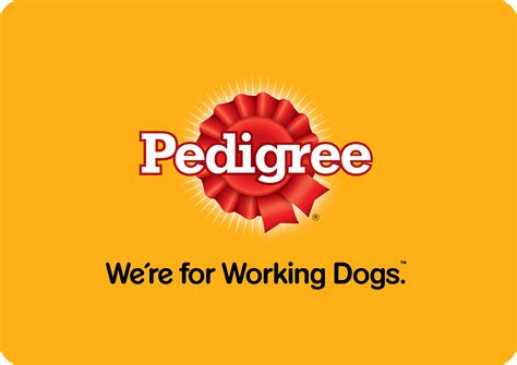 Pedigree Vs Purina – Which is Better?
