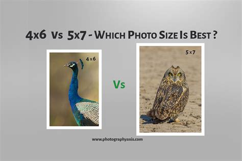 4x6 Vs 5x7 – Which Photo Size is Best? - PhotographyAxis