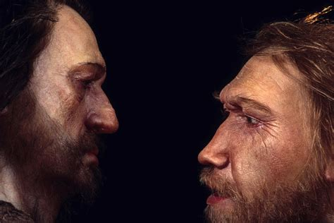 Science Seeks Clues to Human Health in Neanderthal DNA | WBEZ